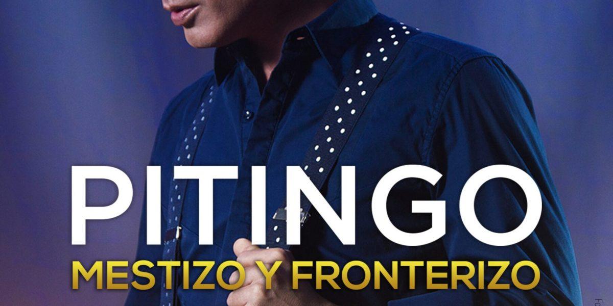 CARTEL_pitingo_mestizo_A4 - nuevo
